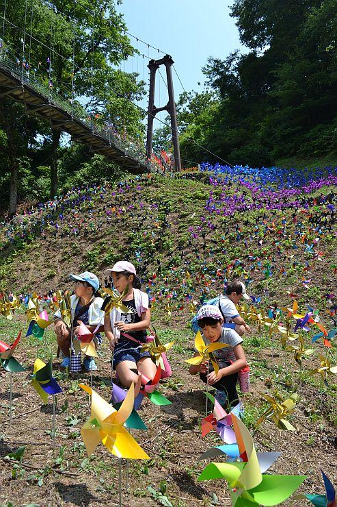 約3500本のカラフルな風車を使ったアート作品=柏崎市高柳町高尾