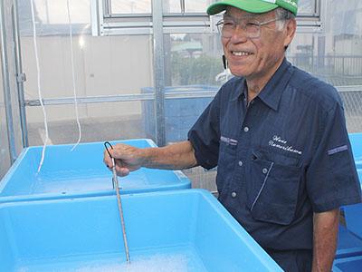 海洋深層水の塩いかが 滑川・シルバー人材センターとウェーブ滑川共同開発