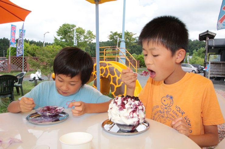 地元産ブルーベリーをふんだんに使ったかき氷を食べる来店客=15日、新潟市秋葉区