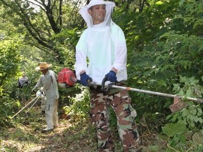 小国「森林公園」初トレラン 自慢の「宝」駆け抜けて 10月開催 住民らコース整備