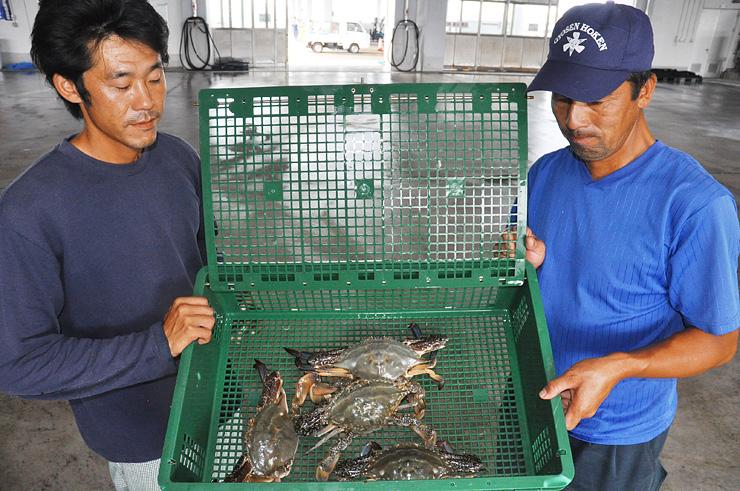 新湊沖で捕れた重さ約1キロのワタリガニを持つ射水市漁業協議会のメンバー=新湊漁港