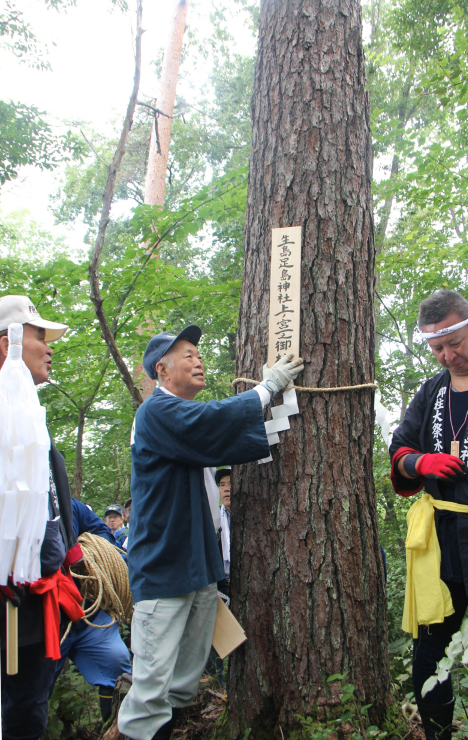 本見立てで選ばれたアカマツに「上ノ宮一」の木札を付ける氏子たち