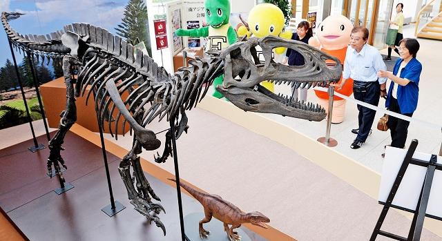 フクイラプトルの実物大骨格(複製)などが並ぶ特別展のサテライト会場=10日、福井市大和田町の福井新聞社