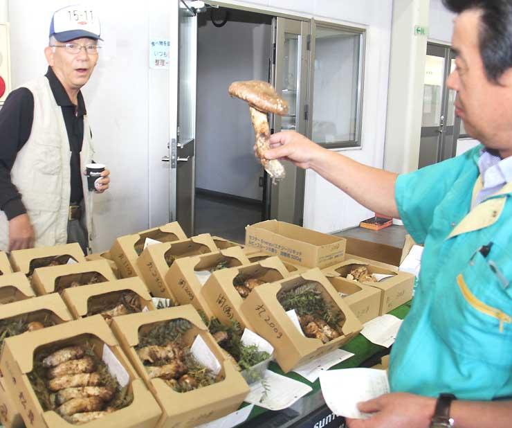 長野県連合青果の市場に並んだ上田小県地域産を中心としたマツタケ