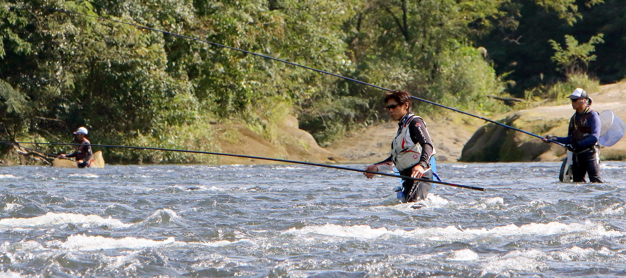 犀川で落ちアユを狙う釣り人=金沢市大桑町