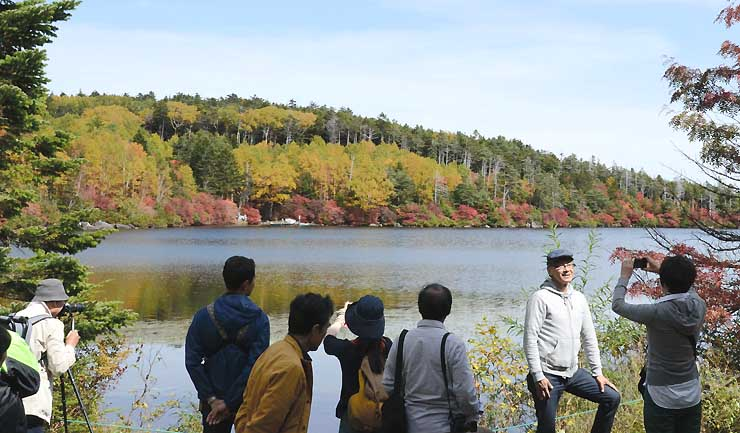 白駒池のほとりで紅葉の写真を撮る人たち