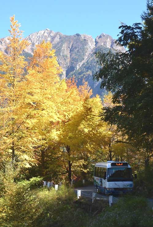 鋸岳を背に紅葉の中を走る南ア林道バス=8日