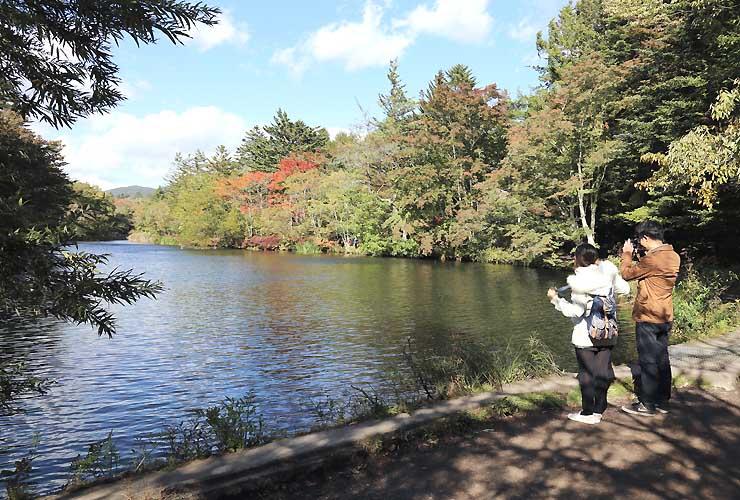 軽井沢観光ガイドの会が案内先の一つとして考えている雲場池