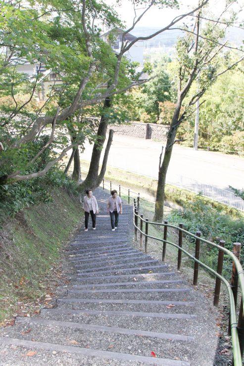新設された遊歩道。もみじ園と松籟閣が行き来しやすくなった=長岡市