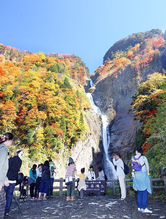 紅葉が見頃を迎えている称名滝=立山町芦峅寺
