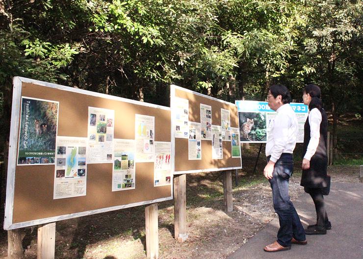 ツシマヤマネコ舎の前で行われているパネル展=富山市ファミリーパーク