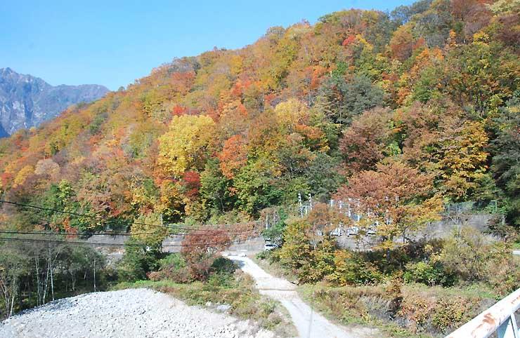 見頃を迎えた栄村秋山地区の紅葉