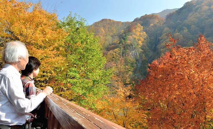 紅葉が見頃を迎えた八滝(右奥)を臨む展望台には大勢の観光客が訪れていた=20日午後1時14分、高山村