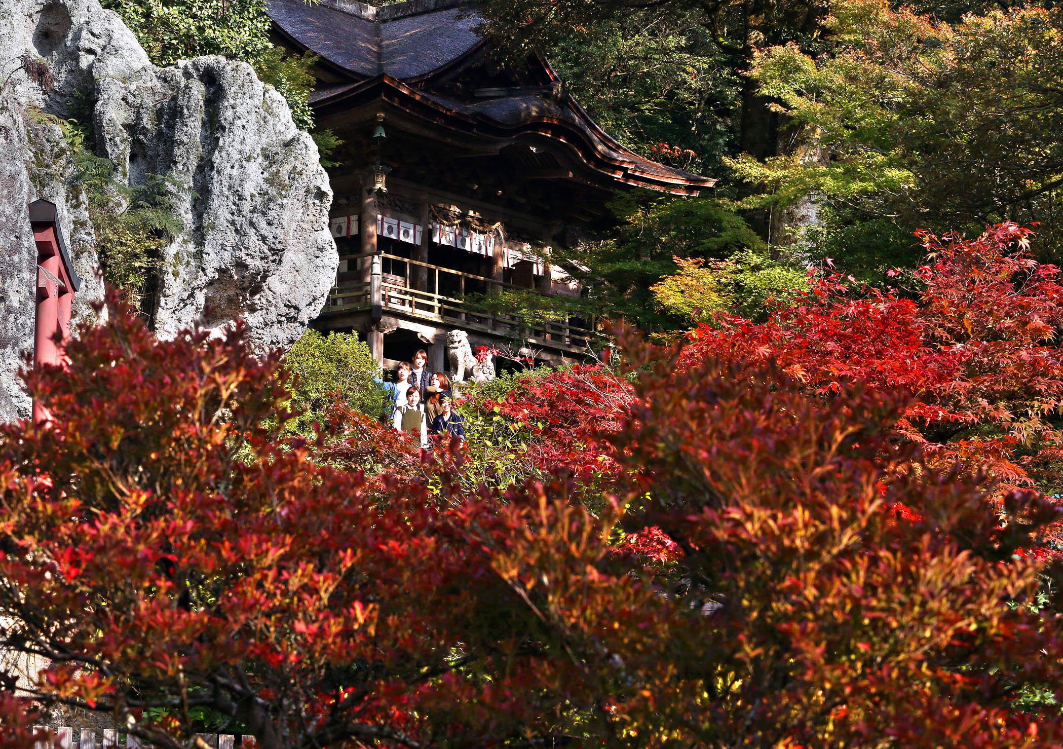 色づき始めた紅葉を楽しむ参詣者=小松市の那谷寺