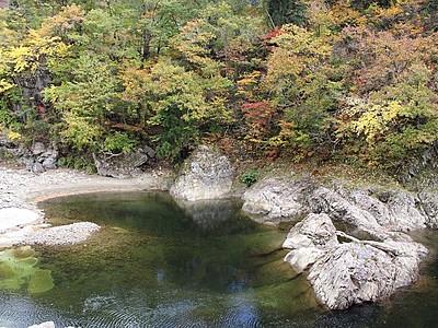 [紅葉 新潟県内見どころガイド]室谷集落周辺(阿賀町) 清流に落ち葉彩り添え