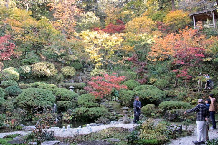 秋の一般公開が始まった普済寺の庭園。鮮やかな紅葉が一面に広がる=1日、村上市
