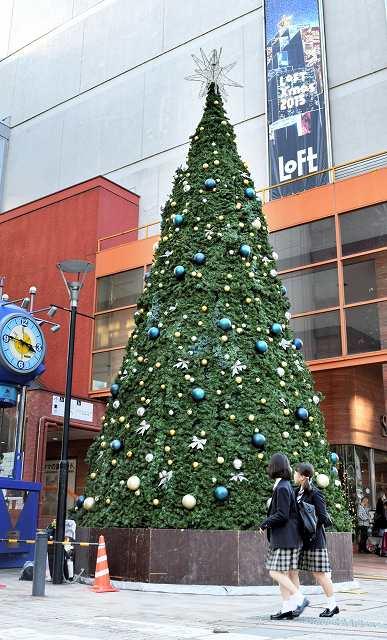 新企画が盛り込まれた「2015ふくい冬のイルミネーション」のメーンツリー=4日、福井県福井市