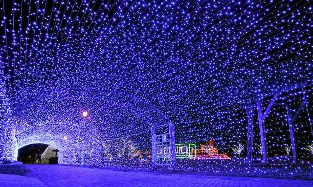 敦賀港イルミネーション「ミライエ」の試験点灯=5日夜、福井県敦賀市の金ケ崎緑地