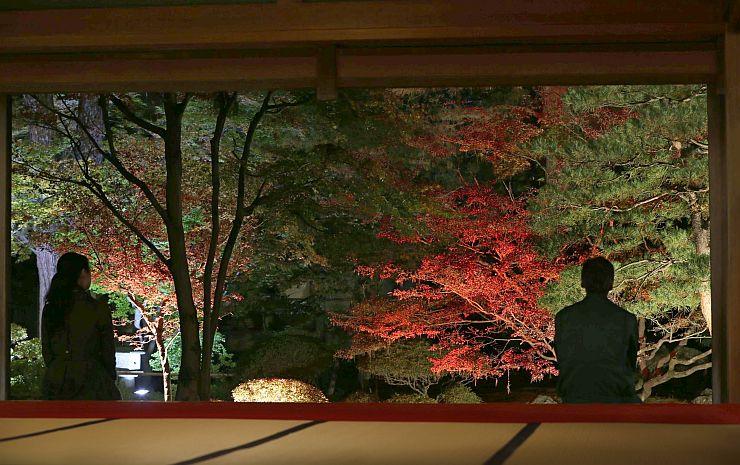 大広間の縁側で夜の紅葉を楽しむ観光客=12日、新潟市江南区沢海2