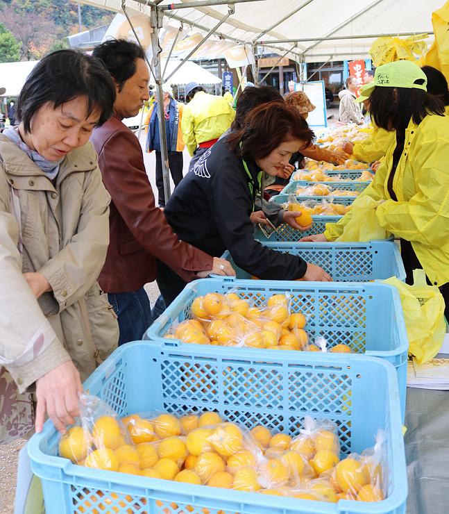ユズを品定めする買い物客=庄川水記念公園
