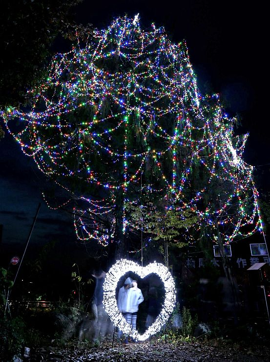 きらびやかな電飾で地域を彩っているジャンボツリー=21日、上越市牧区柳島