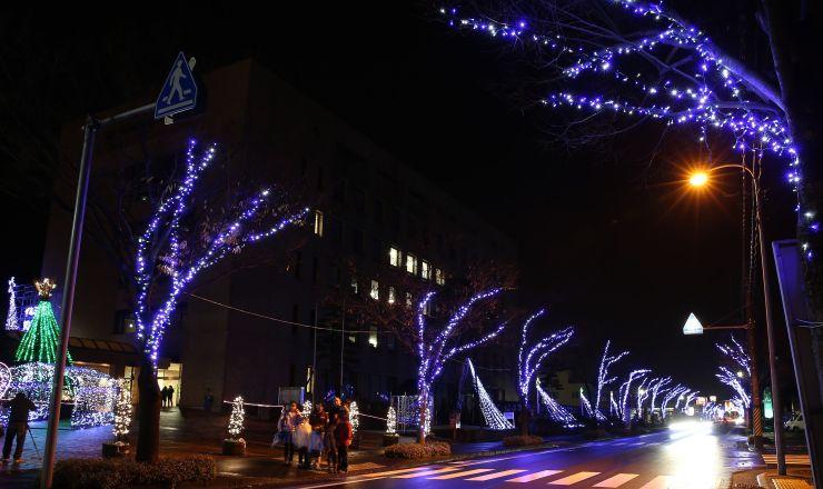 青や白の明かりが光のトンネルを作る街路樹イルミネーション=29日、見附市昭和町2