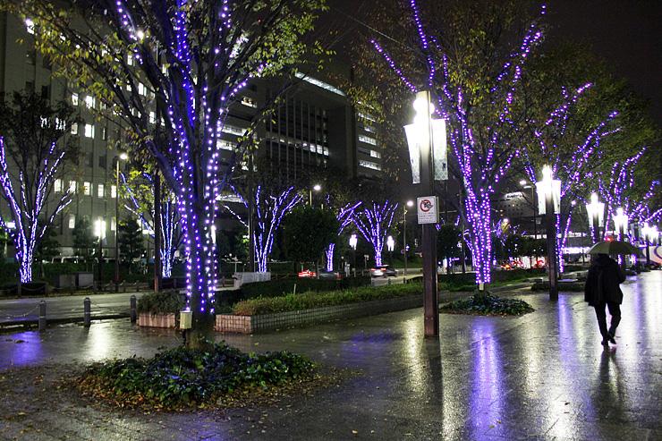 華やかなイルミネーションが点灯された通り=富山市牛島町