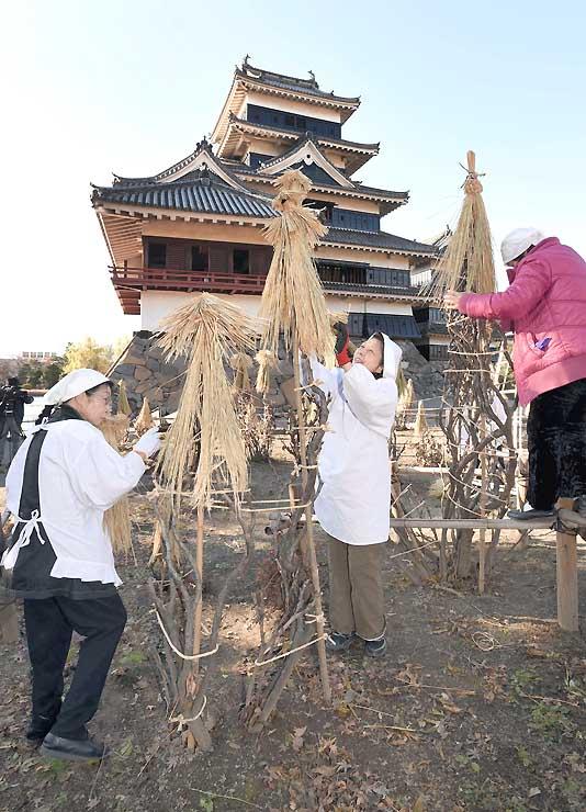 国宝松本城の天守前で、寒さから樹木を守る冬囲いの作業をする女性たち=1日午後2時8分、松本市