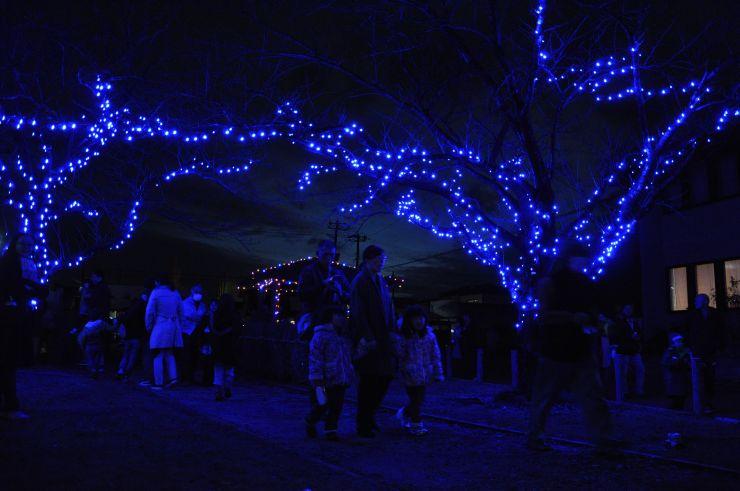 ライトアップを楽しむ住民=6日、新潟市南区