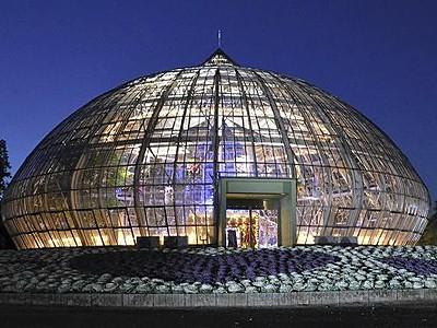 闇夜に光る大きなタマネギ 福井県総合グリーンセンター温室
