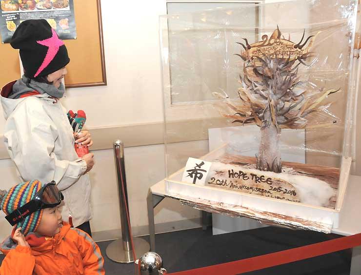 開田高原マイアスキー場内に登場したチョコレートの木