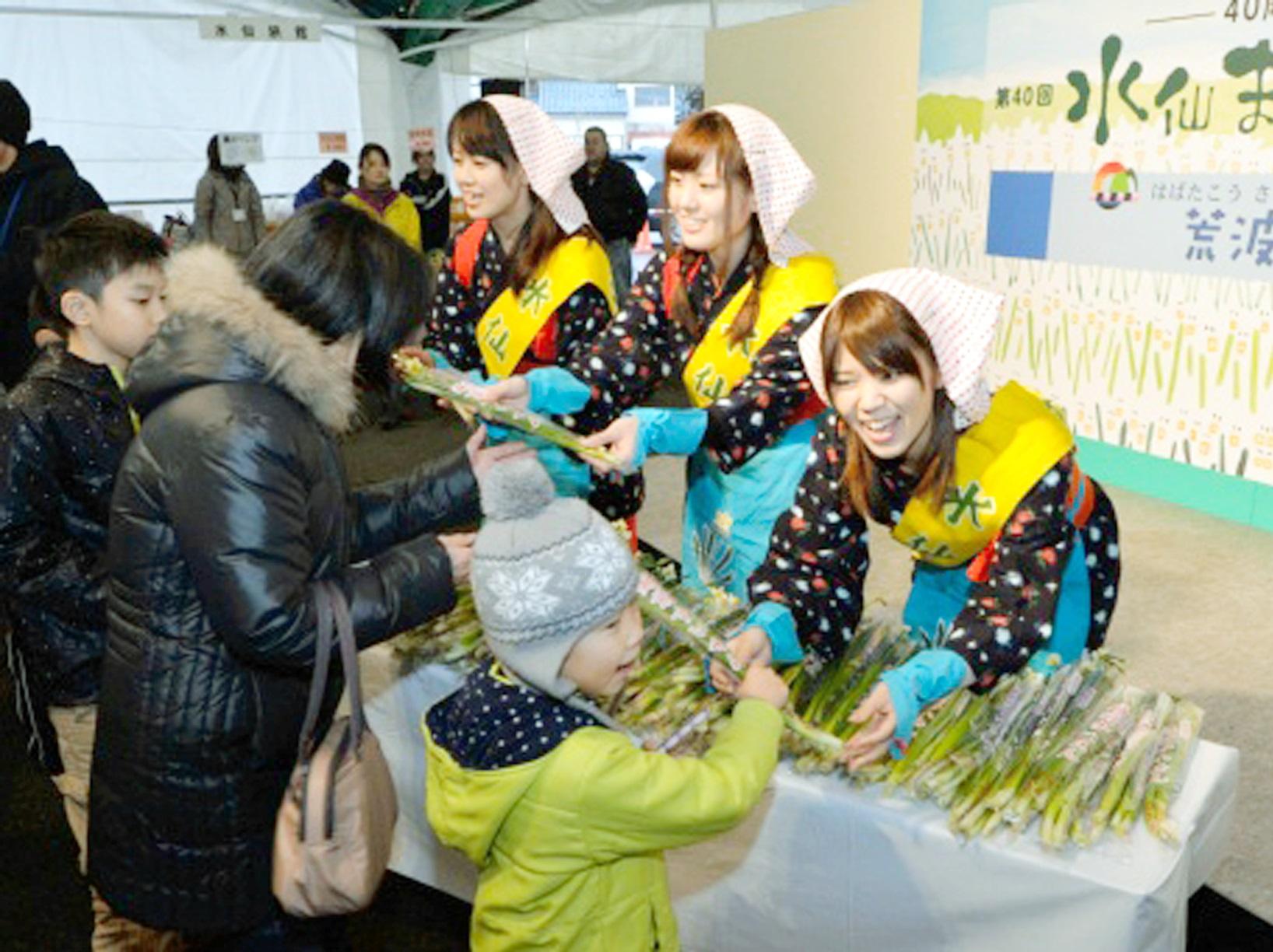 昨年の水仙まつりで水仙を配る水仙娘=福井県南越前町河野の河野シーサイドパーク