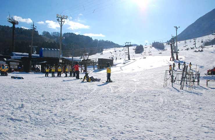 2月1日はリフト1日券を60円にする木島平スキー場