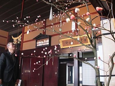 小正月彩る「団子の木」 渡辺邸で7年ぶり展示 関川