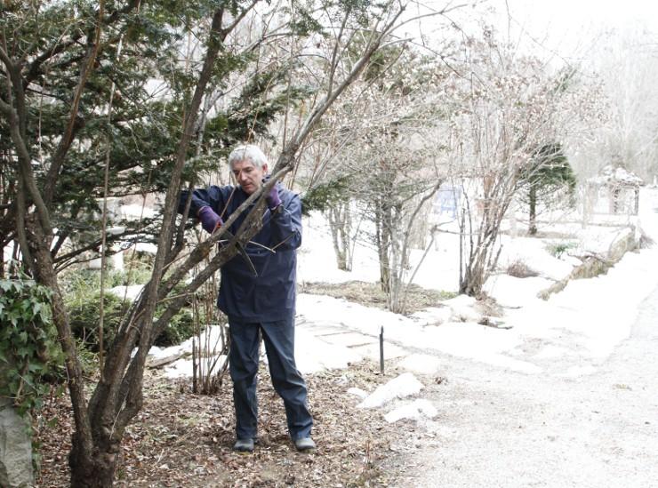 雪に覆われた庭園で、春に向けて剪定作業をするフィッシャーさん