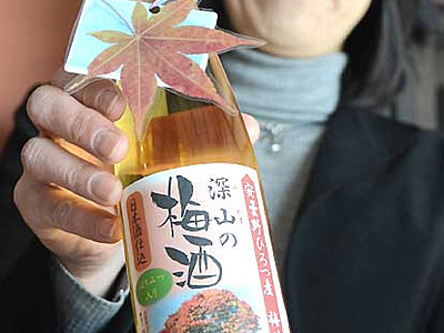 池田の梅園復活、梅酒でエール 地元酒造が3月4日発売