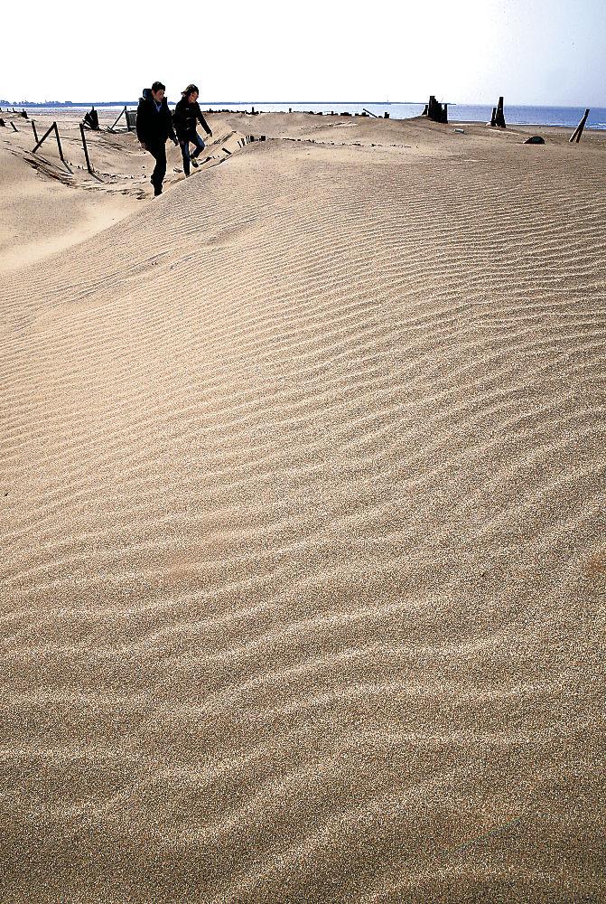 砂が海風に吹かれて描かれた風紋=内灘町の内灘海水浴場