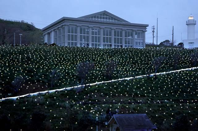 約9千個のLEDで彩られたスイセン畑=13日午後6時10分、福井県越前町血ケ平の越前岬水仙ランド
