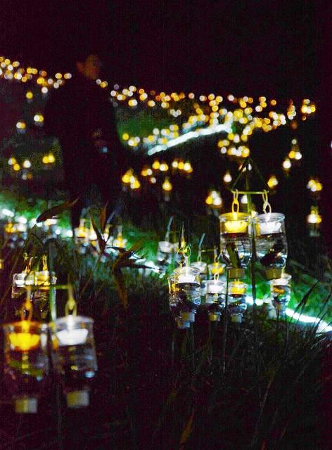 水仙畑を明かりで彩った「水仙岬のかがやき」=13日午後7時10分ごろ、福井県越前町血ケ平の越前岬水仙ランド