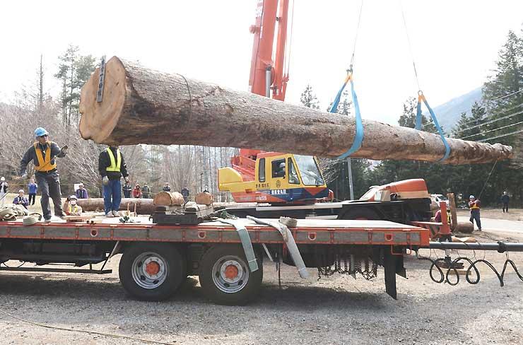 トレーラーに積み込まれる「本宮一」の御柱用材。巨木がゆっくりと宙に浮いた=24日、辰野町の「かやぶきの館」
