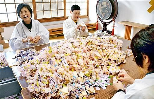 桜の小枝に短冊や絵馬を取り付ける金ケ崎町婦人部員=24日、福井県敦賀市の金崎宮