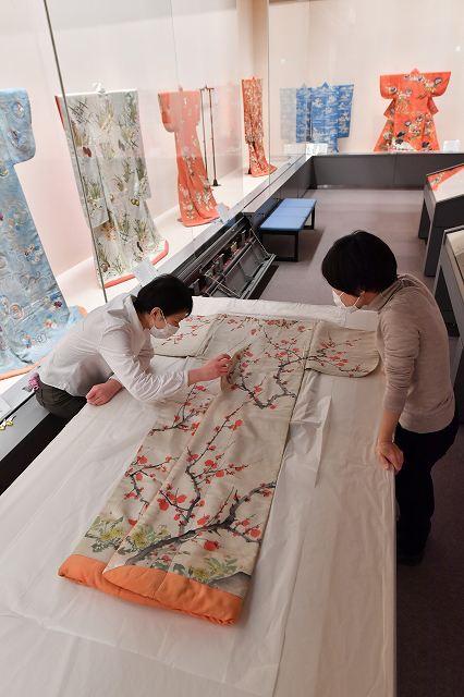 酒井抱一が手描きした重文の小袖の展示準備を進める学芸員=4日、福井市郷土歴史博物館