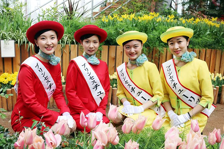2016プリンセスチューリップに選ばれた(左から)岩城さん、農作さん、花車さん、伊勢さん=チューリップ四季彩館