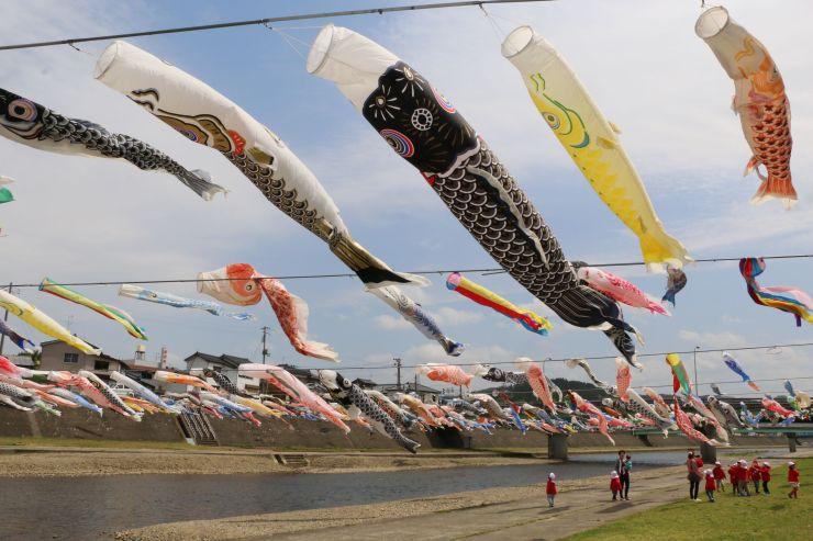 加茂川の川風に揺られ、悠然と泳ぐこいのぼり=19日、加茂市