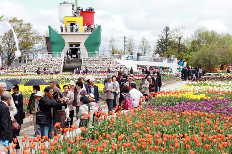 チューリップが咲き誇る会場=砺波チューリップ公園
