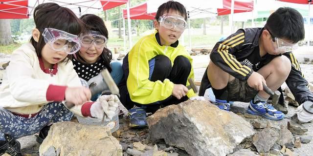 ハンマーを使い化石の発掘体験をする子どもたち=29日、福井県大野市角野