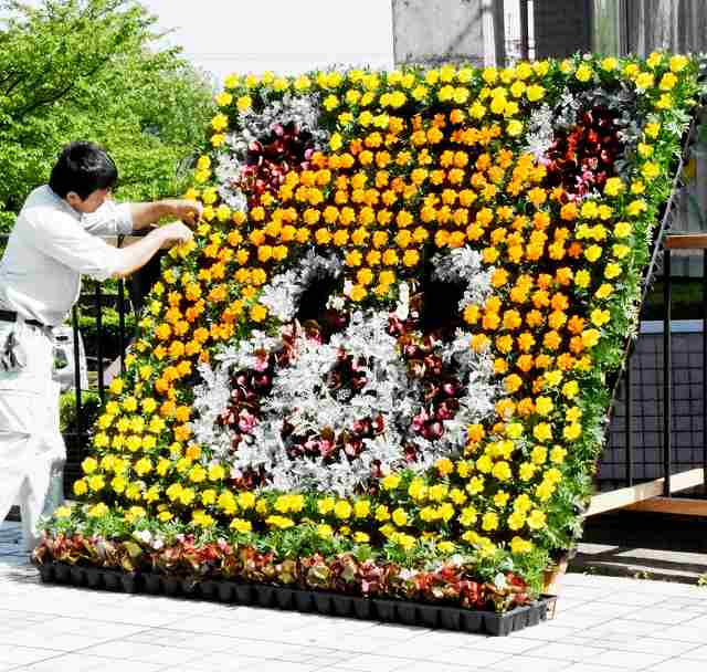 観光客を出迎えるレッサーパンダの花のモニュメント=2日、福井県鯖江市桜町3丁目の西山公園管理事務所前