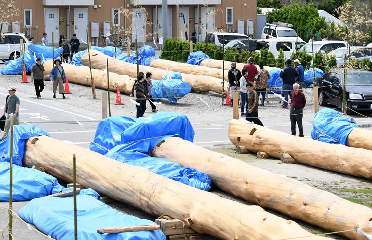 諏訪大社御柱祭の上社里曳き開幕を前に、8本を見学に訪れる人が絶えなかった御柱屋敷=2日、茅野市