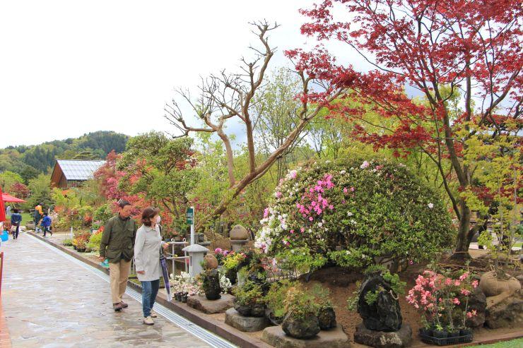 オープンした「庭園の郷 保内」で花や木を観賞する市民ら=三条市下保内