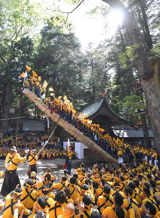 氏子たちが協力し、徐々に立ち上がる本宮二の御柱=5日午後2時32分、諏訪市中洲の諏訪大社上社本宮